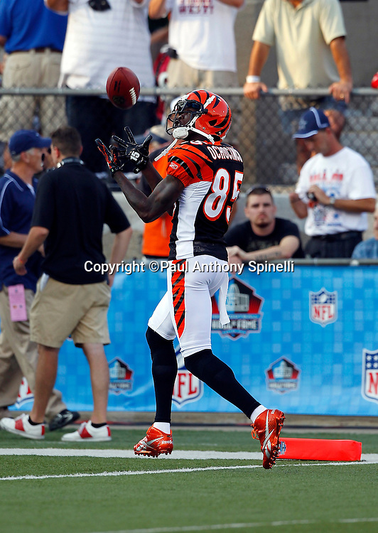 Cincinnati Bengals wide receiver Chad Ochocinco (85) catches a pregame pass during the NFL Pro Football Hall of Fame preseason football game between the Dallas Cowboys and the Cincinnati Bengals on Sunday, August 8, 2010 in Canton, Ohio. The Cowboys won the game 16-7. (©Paul Anthony Spinelli)