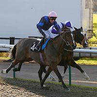 Hidden Justice and Eddie Ahern winning the 1.35 race