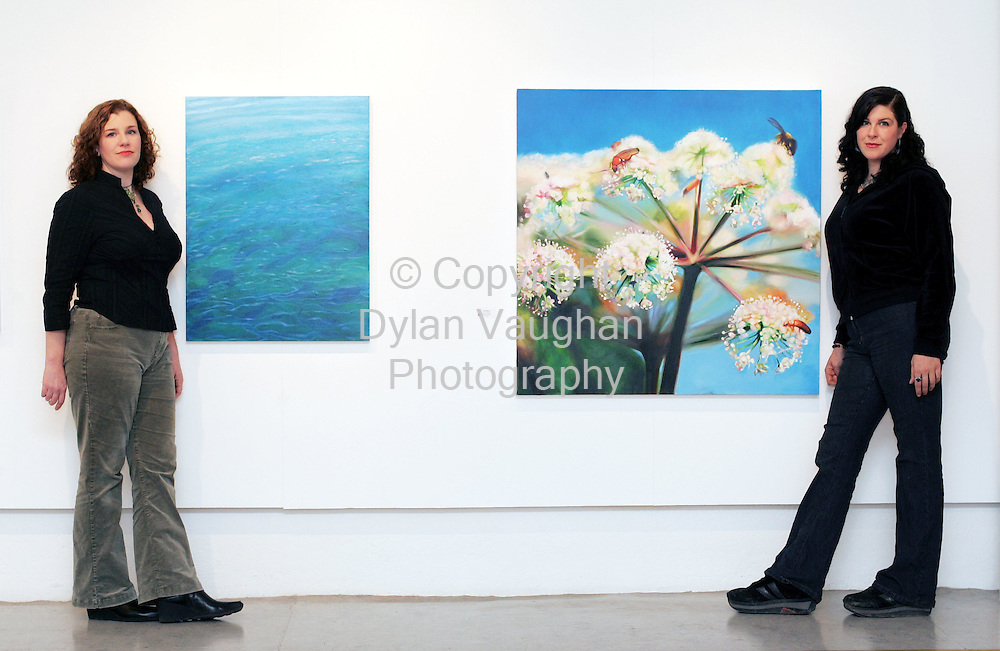 """21/11/2005.Blawnin (left) and Rayleen Clancy pictured with work Ocean Ripple (left by Blawnin) and Gathering (right by Rayleen) at their exhibition """"Natural History-Áilleacht Chroí at the Greyfriars Municipal Art Gallery in Waterford..Picture Dylan Vaughan."""