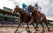 2017 Horse Racing