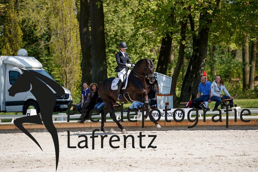 Freese, Isabel (NOR), Bourani<br /> Redefin - Pferdefestival 2017<br /> © Stefan Lafrentz