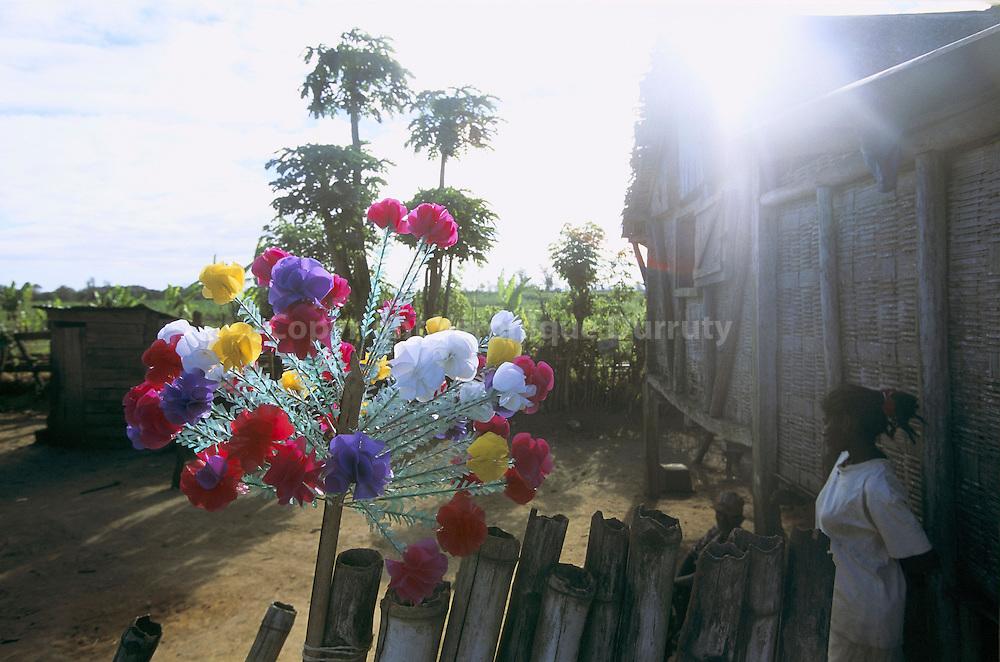 COURONNE MORTUAIRE, PROVINCE DE TAMATAVE, MADAGASCAR Ces couronnes de fleurs sont realisees a l'occasion de la fete des morts le 2 novembre.