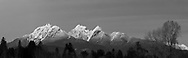 Black and white panorama of the Golden Ears (Mount Blanshard) as photographed from Derby Reach Regional Park at Meunch Bar in Langley, British Columbia, Canada.