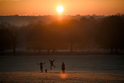 © Licensed to London News Pictures. 02/12/2019. London, UK. Dog walkers watch the sunrise as frost covers the landscape at sunrise in Richmond Park in west London on a bright and freezing Winter morning. Photo credit: Ben Cawthra/LNP