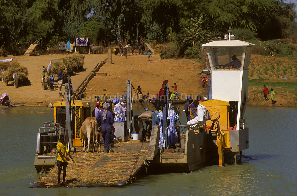 "Morfil (French: Ile a Morfil; literally, ""Ivory Island"") is th largest island of Denegal. It lies between the River Senegal and the Doue River in northern Senegal..Around the eleventh century, Morfil was the centre of Tekrur, one of the first Islamic sub-Saharan states. As such, it was an important centre of trans-Saharan trade. The island later became part of the Ghana Empire, then the Mali Empire, and was finally conquered by the French. It is named for the elephants which once roamed the island, but are now locally extinct. .."