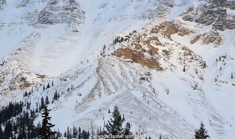 Shale beds on Mount Stephen.
