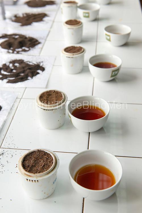 Tea tasting at the factory. Dambatenne Estate.