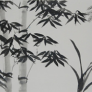 Sumi - Bamboo and Classic
