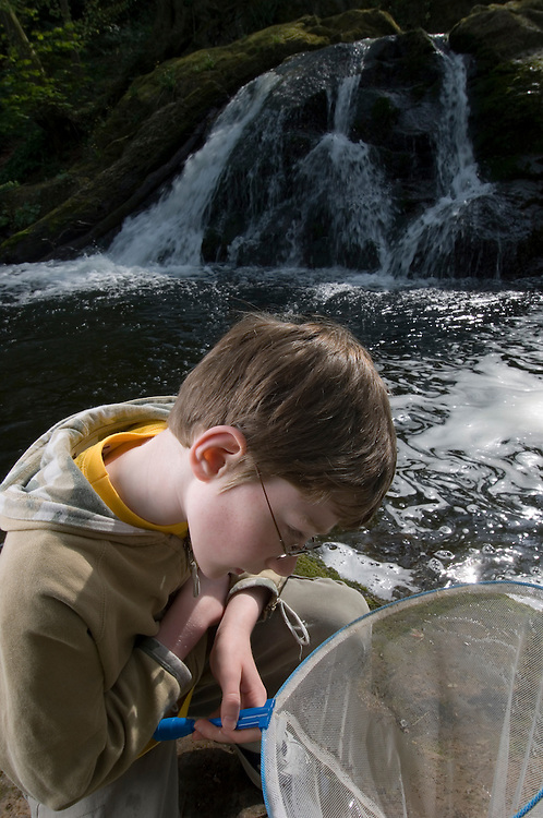 Boy, 8,  net dipping for invertebrates, Scotland