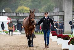 Verwimp Jarno, BEL, Mahalia<br /> Mondial du Lion - Le Lion d'Angers 2019<br /> © Hippo Foto - Dirk Caremans<br />  16/10/2019