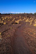 The Kings Trail and ancient Hawaiian petroglyphs, Waikoloa, The Big Island, Hawaii