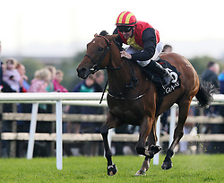 Empress Lyla ridden by Gary Carroll on the way to winning the Arthur Guinness Handicap on Friday's Fair Lady Day of the Galway Summer Festival at Galway Racecourse.