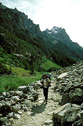 WY: Grand Teton National Park, Wyoming; hiker, hiking near Jenny Lake                 .Photo Copyright: Lee Foster, lee@fostertravel.com, www.fostertravel.com, (510) 549-2202.Image: wygran228