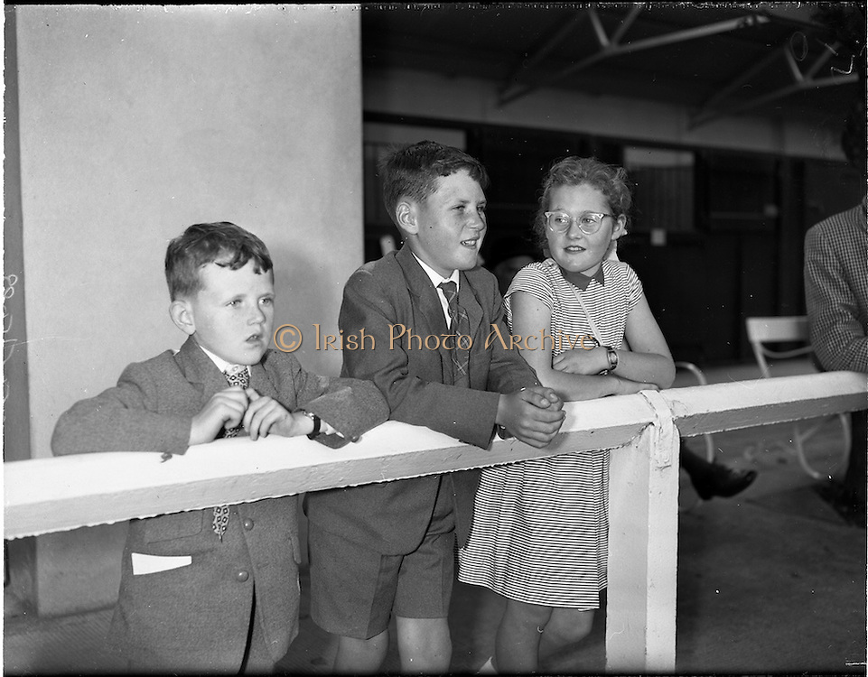 """02/08/1960<br /> 08/02/1960<br /> 02 August 1960<br /> R.D.S Horse Show Dublin (Tuesday). Watching their father Mr. Vincent Murray, Ballyowan, Co. Down, win on his 2 year old gelding colt """"No Cop"""" at the Dublin Horse Show were (l-r): sons Robert (8) and Vincent (12) and daughter Mary (10)."""