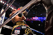 Wilder v. Molina bout. Photographed for Sports Illustrated, 2015