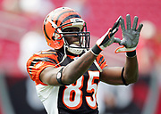 TAMPA, FL - OCTOBER 15:  Wide receiver Chad Johnson #85 of the Cincinnati Bengals catches a pass during pregame warmups against the Tampa Bay Buccaneers at Raymond James Stadium on October 15, 2006 in Tampa, Florida. The Bucs defeated the Bengals 14-13. (©Paul Anthony Spinelli) *** Local Caption *** Chad Johnson