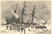 'Benjamin Leigh Smith's (1828-1913) ''Eira'' Arctic Expedition to Franz Joseph Land 1881-1882. The crew salvaging everything possible when the ''Eira'' was crushed in the ice, 21 August 1881. Engraving.'