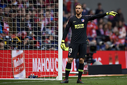 February 9, 2019 - Madrid, Madrid, Spain - Jan Oblak of Atletico Madrid during the week 23 of La Liga between Atletico Madrid and Real Madrid at Wanda Metropolitano stadium on February 09 2019, in Madrid, Spain. (Credit Image: © Jose Breton/NurPhoto via ZUMA Press)