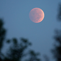 The moon nears total eclipse Wednesday morning in Mount Pleasant. (ANDREW KNAPP/STAFF)