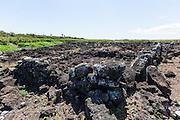 Koloa Field, Kauai, Hawaii