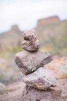 Agave, Aravaipa Canyon Preserve, AZ.