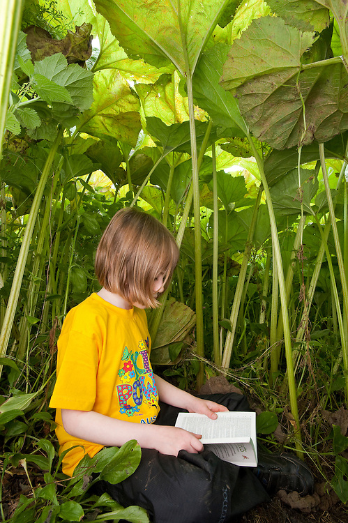Young girl sitting under a canopy of butterbur leaves, Scotland