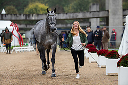 Minner Manon, BEL, Cool Dancer<br /> Mondial du Lion - Le Lion d'Angers 2019<br /> © Hippo Foto - Dirk Caremans<br />  16/10/2019