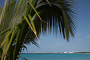 Anguilla, British West Indies  - Palm tree arches over image of long beach of Rendezvous bay with the CuisninArt resort in the distance.