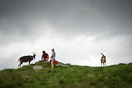 Beñat cleans Kemen's knife at the top of a hill, as they went to wear the goats to look for better grass. Village of Brontallo (Switzerland) July 04, 2014. Beñat and Nathalie spend two months (July and August) on Spulüi, at 1.900 meters, taking care of goats and making cheese. Their children Kemen (7 years old) and Oihu (18 months) are with them. (Gari Garaialde / Bostok Photo)