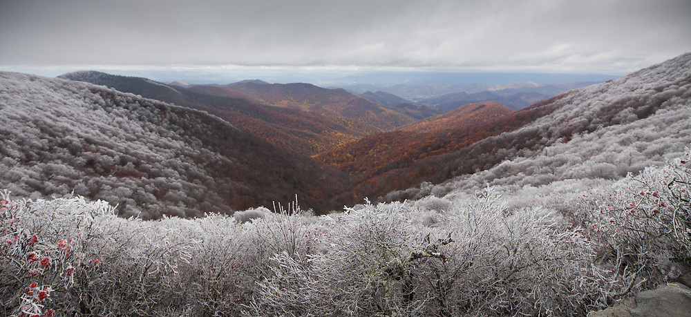 rime ice line and fall foliage as seen from craggy gardens on blue