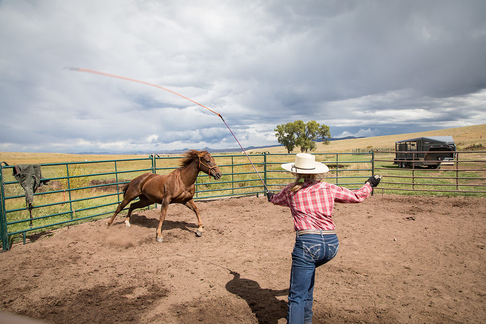 During the Wet Mountain Western Pilgrimage, Elin Parker Ganschow explains how training a horse can follow the teachings of Christ at her ranch in the southern Wet Mountain Valley.