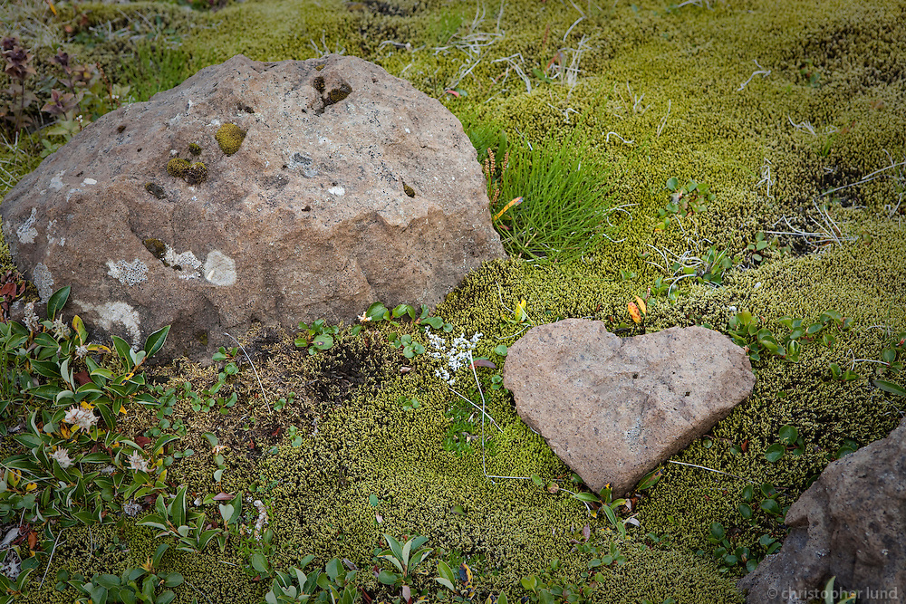 Steinhjarta í Fögrufjöll. Heart-shaped rock in Fogrufjoll mountins.
