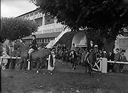 RDS Horse Show at Show Grounds, Ballsbridge, Dublin.Parade of Prize Winning Horses and Ponies.02/06/1954