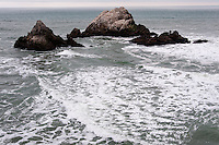 United States, California, San Francisco. Seal Rock outside Cliff House.