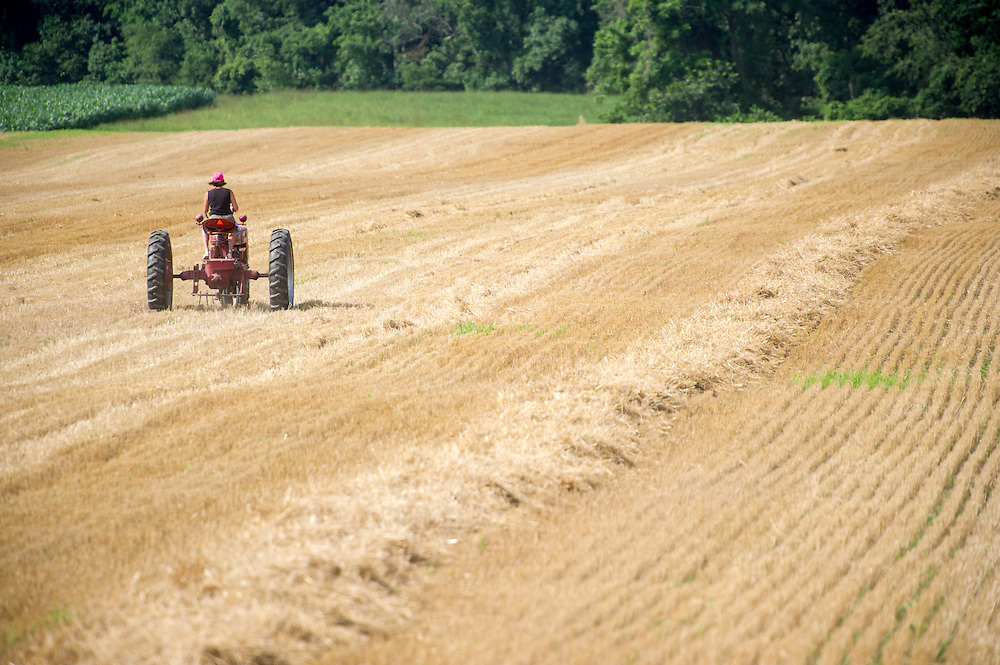 Woman farmer driving old tractor in field
