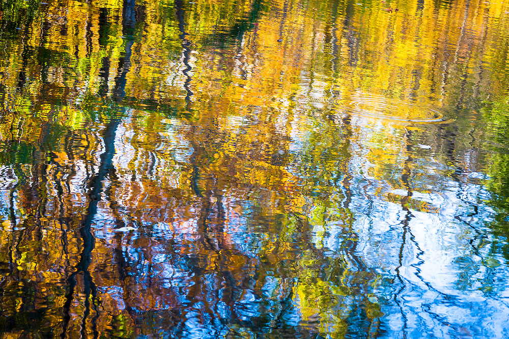 Fall leaf reflections in a pond