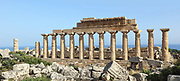 Temple C, built 550 BC, on the acropolis of the ancient ruined Greek city of Selinunte, Sicily, Italy. The temple had a peristyle of 6 x 17 Doric columns, 14 of which were re-erected in 1925-27 along with a section of the entablature. It was dedicated to Apollo and is thought to have been used as an archive. In the foreground are the ruins of Temple D, built 540 BC, which was dedicated to Athena and had a peristyle of 6 x 13 Doric columns. Selinunte was founded in 628 BC and was an important Greek colony, home to up to 100,000 people at its peak and abandoned in 250 BC. The city consists of an acropolis housing 2 main streets and 5 temples, 3 other hills with housing and temples and 2 necropoleis. Picture by Manuel Cohen