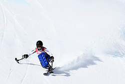 SCHAFFELHUBER Anna LW10-2 GER competing in the Para Alpine Skiing Downhill at the PyeongChang2018 Winter Paralympic Games, South Korea