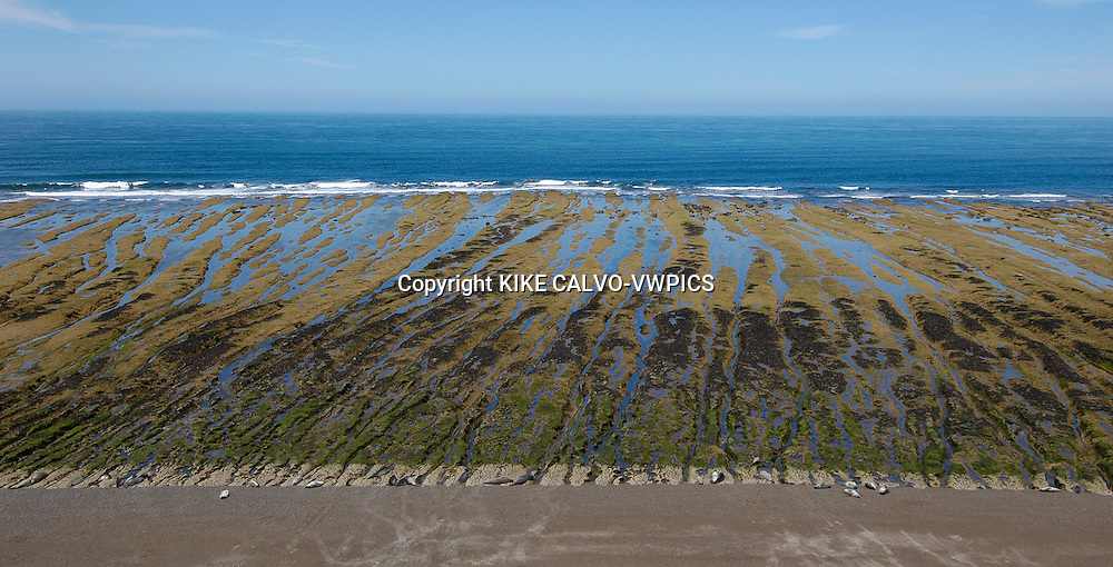 The Valdes Peninsula (Spanish Peni?nsula Valde?s), UNESCO World Heritage Site, is a peninsula along the Atlantic coast in the Viedma Department in the north east of Chubut Province, Argentina. Its size is about 3,625 km². The nearest large town is Puerto Madryn. The coastline is inhabited by marine mammals, like sea lions, elephant seals and fur seals.Atlantic Ocean. Peninsula Valdez. Patagonia (Argentina), Pictured: Caleta Valdes at low tide