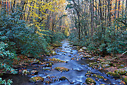 View of the Oconaluftee River in Great Smoky Mountains National Park, North Carolina