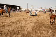 Wilsall Ranch Rodeo, Calf Branding Competition, Tyler Serrazin, Jessie Serrazin, Garrett Hamm, Jaime Wood, Inlaws and Outlaws team, Montana