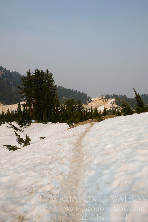 The path to Bumpass Hell, the park's largest hydrothermal area, was covered with a large snow pack, even in late June, 2008 - Lassen Volcanic National Park, California, USA.