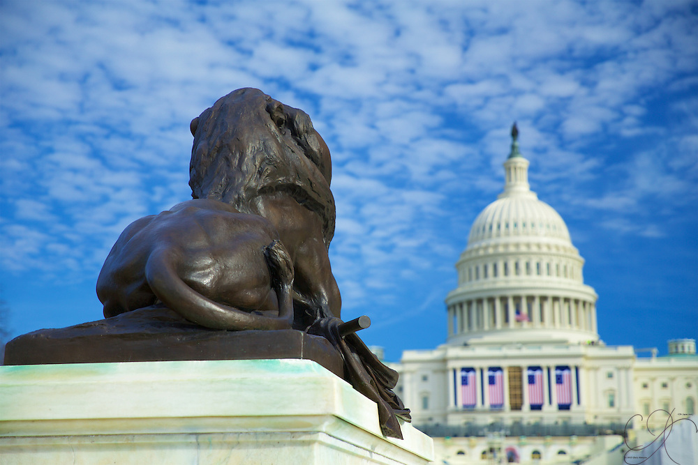 One of four lions from the Ulysses S. Grant Memorial looks back towards the Capitol as if to keep an eye on it.