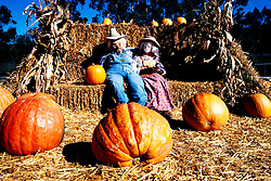 California: San Mateo Coast.  .Half Moon Bay October Halloween Pumpkin Festival..Photo copyright Lee Foster, 510/549-2202, lee@fostertravel.com, www.fostertravel.com..Photo #: camate104