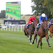 Newmarket 28th August
