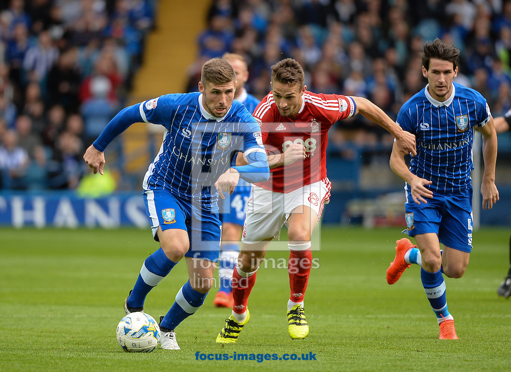 Gary Hooper of Sheffield Wednesday breaks forward during the Sky Bet Championship match at Hillsborough, Sheffield<br /> Picture by Richard Land/Focus Images Ltd +44 7713 507003<br /> 24/09/2016