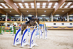 Anna Kellnerova of Czech Republic with her horse Kashmir jumps during Equestrian competition  FEI Grand Prix World Cup Celje 2014, on November 30, 2014 in Equestrian Centre Celje, Slovenia. Photo by Vid Ponikvar / Sportida