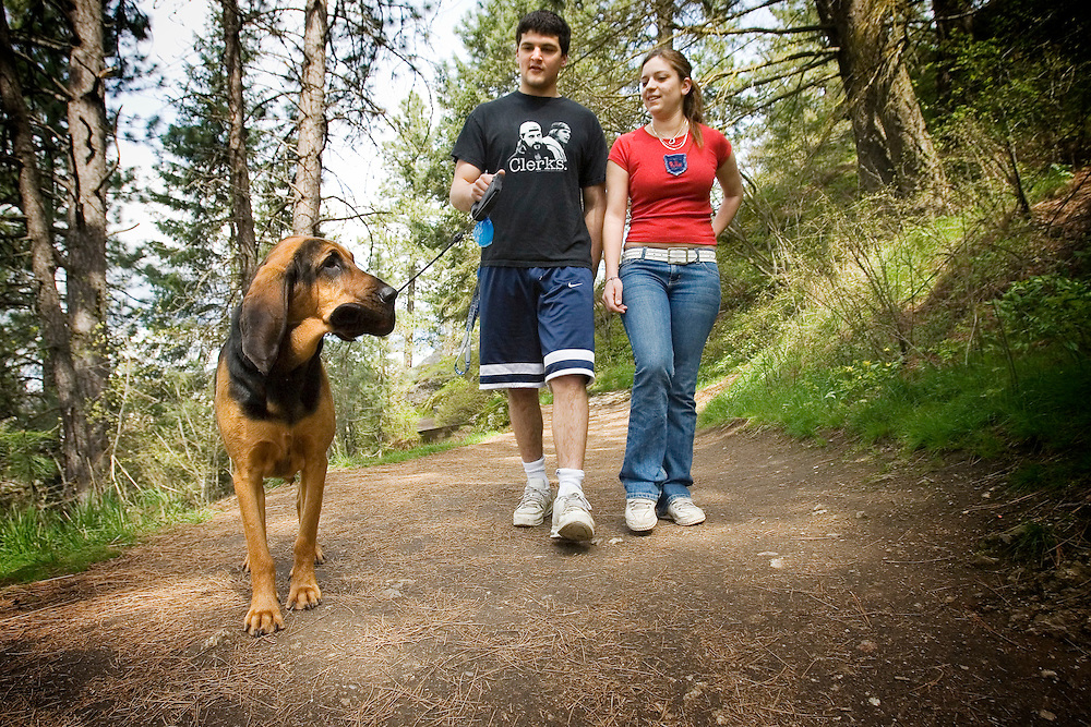 JEROME A. POLLOS/Press..Evan Parberry and Argelia Garmendia walk their 2-year-old blood hound Tuesday on Tubbs Hill. The popular hiking area will be patrolled by animal control and police officers looking for owners who let their dogs roam free on the trail.