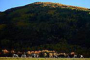 Park City Utah Fall