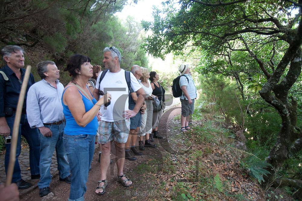 Passeio Rabaçal, Madeira,Passeio Rabaçal-Risco-25 Fontes-trekking, Levada Walks